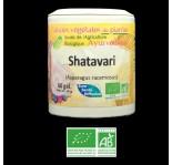 Shatavari Ayurveda Confort feminin bio