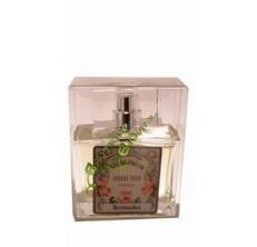 Bermudes - Eau de parfum de Grasse pour homme