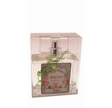 Tango - Eau de parfum de Grasse pour homme