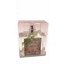 Colorado - Eau de parfum de Grasse pour homme