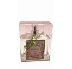Corentin - Eau de parfum de Grasse pour homme