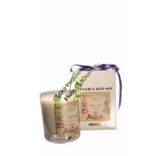 Figuier - Bougie Artisanale parfumée de Grasse